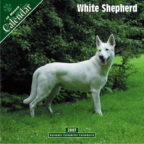 White shepherd dog e cards amp links